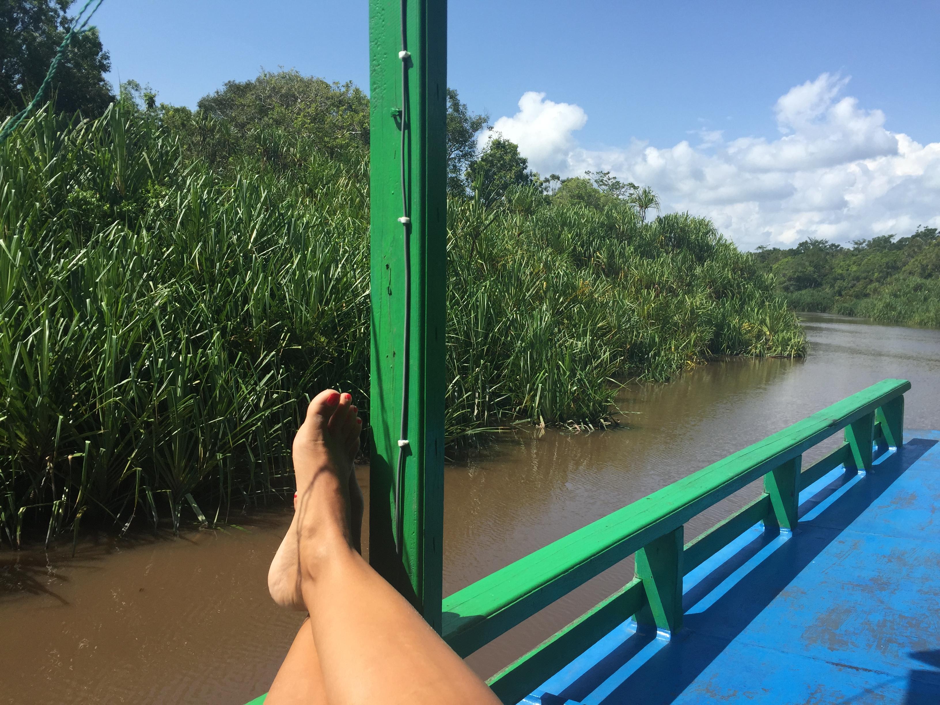 Transcurso del río por el Parque Nacional de Tajung Puting