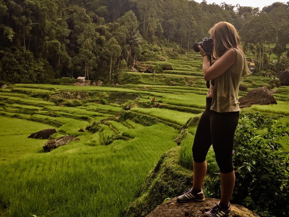 Arrozales de Sulawesi