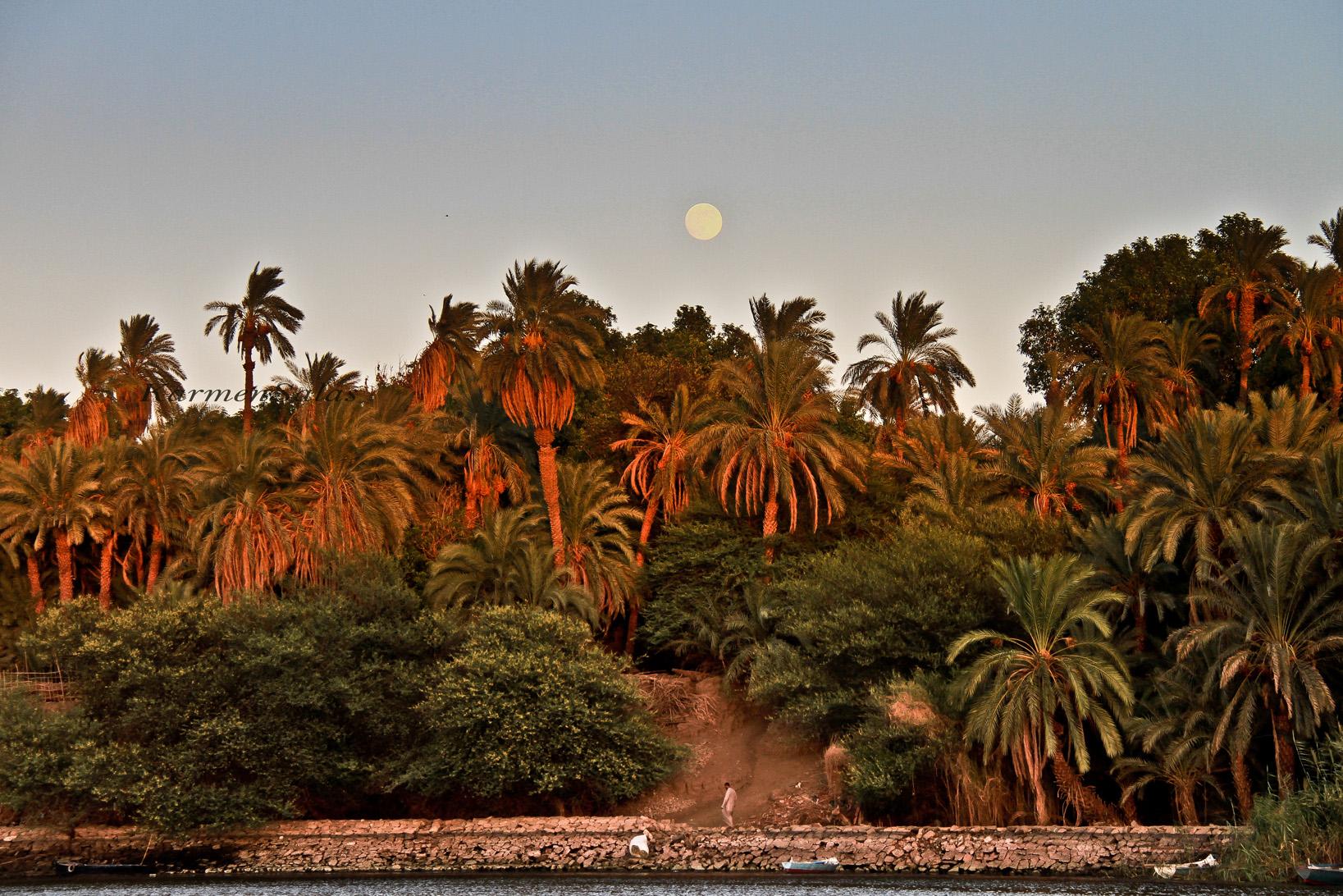 Atardeceres en el Nilo